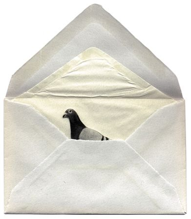 Письмо Даниила Хармса | Вдохновить на роман